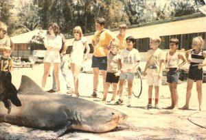 13 Ft Tiger Shark at Midway Island