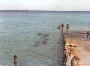 Koral Kings Divers